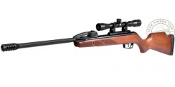 Carabine à plombs GAMO Fast Shot 10X IGT 4,5 mm (19,9 joules) + lunette 4x32 WR